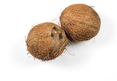 kokosy